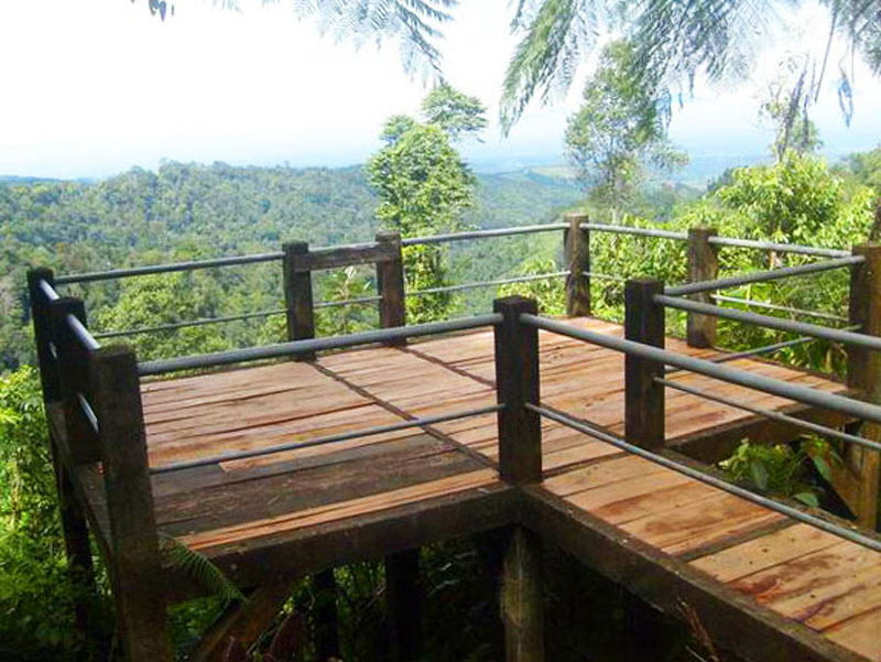 10. Uji nyali melintasi jembatan tali di atas pepohonan di tengah ...