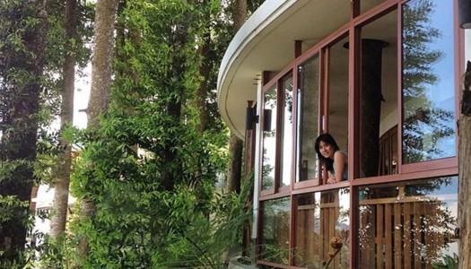 19 hotel indah di Bogor / Puncak untuk sensasi menginap di tengah hutan