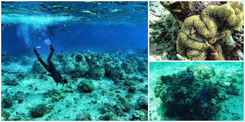 2-d-3-Pulau-Tabuhan---Snorkeling-by-repathony,-zein_zainal,-dissa_dissull