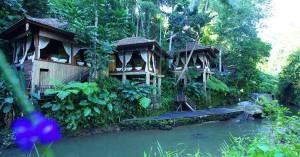 20 hotel dengan pemandangan hutan hijau yang cantik di Bali