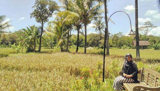 15 Tempat makan di Jogja yang murah dan menawarkan sensasi makan ala kampung
