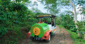 13 Tempat wisata di sekitar jalur tol Semarang - Solo yang mudah diakses