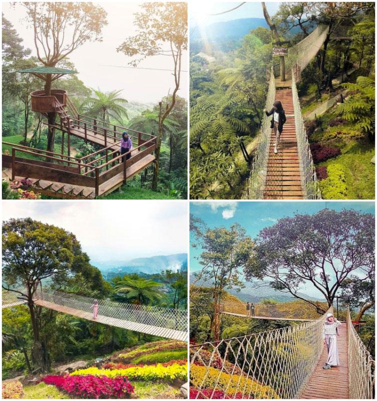 6 Tempat wisata alam di Bogor paling Instagramable di Bogor yang