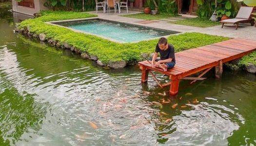 Di Jogja kamu bisa nginep di hotel tepi danau yang indah! – The Westlake Resort Yogyakarta