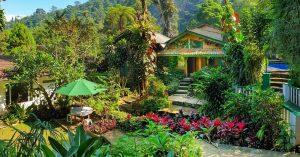 Villa tepi sungai di Puncak dengan kolam renang - ke air terjun tinggal jalan kaki! - Villa Kampung Air Cilember