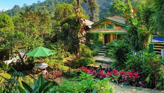 Villa tepi sungai di Puncak dengan kolam renang – ke air terjun tinggal jalan kaki! – Villa Kampung Air Cilember