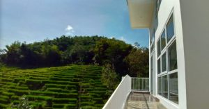 [New] Penginapan tepi sawah ala Ubud di Bandung mulai 400 ribu per malam! - Kina Putih Resort