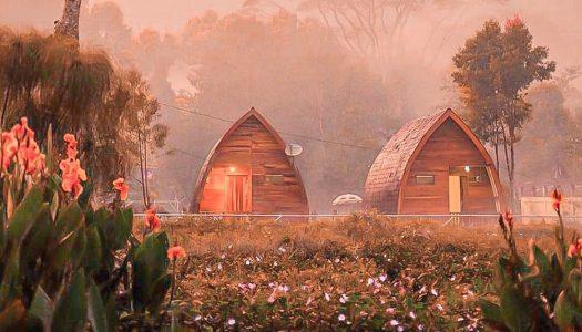 Cottage Sarang Burung Ciwalini: Glamping di tengah kebun teh di Bandung – muat sampai 6 orang!