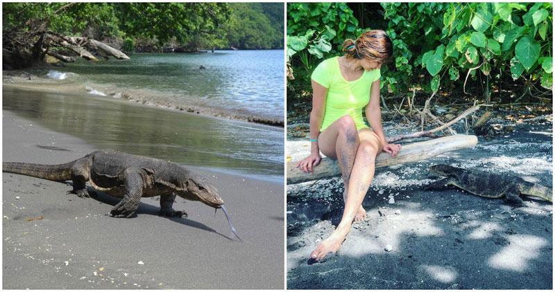 1B1-Krakatau-via-wayfarer_tales,-_jacquelinecheng_