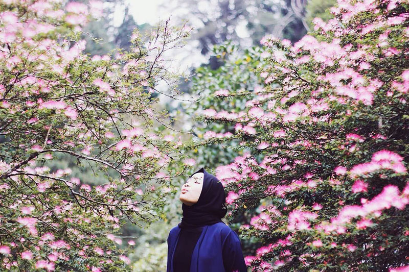 24 Instagrammable Natural Attractions In Bogor That Will