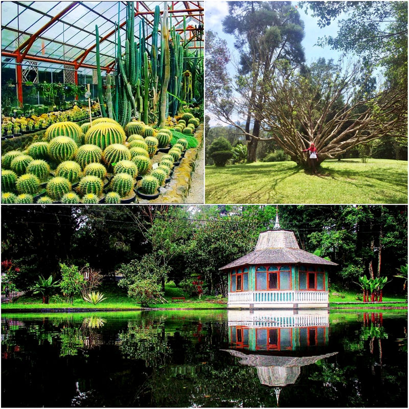 24 Instagrammable Natural Attractions In Bogor That Will Change Your